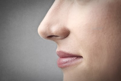 A  womans nose