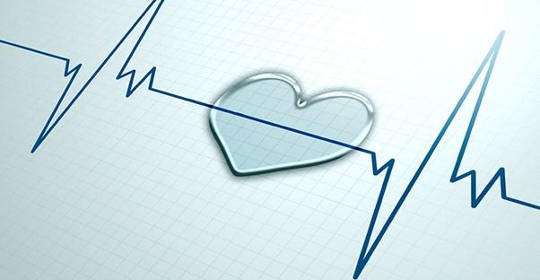 heart murmur grading