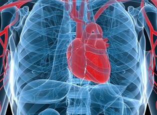 3D imaging can identify acute coronary syndrome causes
