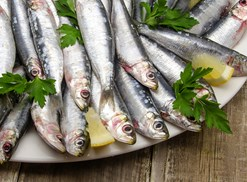 Some high-calcium sardines