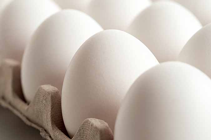 are eggs on bland diet