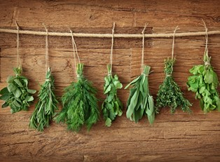 herbs representing alternative medicine