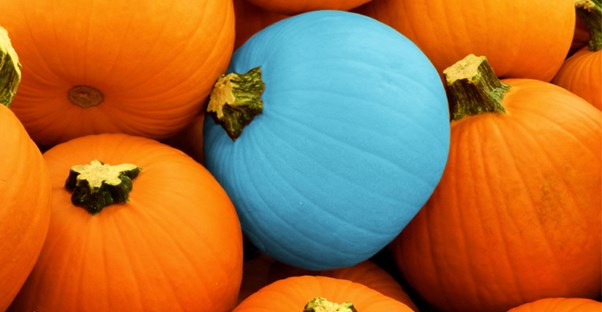 a teal pumpkin, which represents allergy-friendly trick-or-treating
